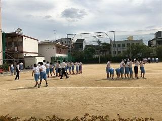 体育④.JPG