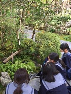 嵐山4.JPG