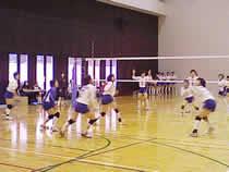 10.11.03_volley01.jpg