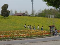 11.04.26_ensoku015.jpg