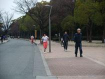 13.02.05_jog05.jpg