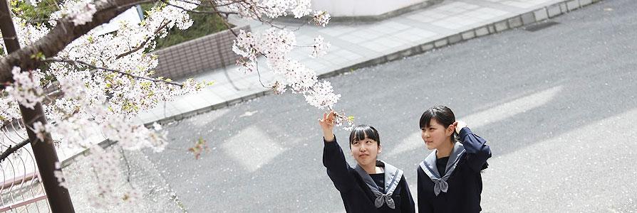 入学式/始業式/創立記念日/春季校外学習