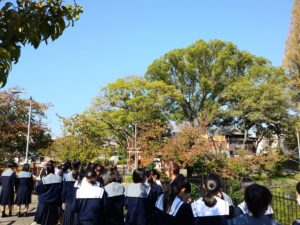 和歌の授業にて~桃ヶ池公園を散策~